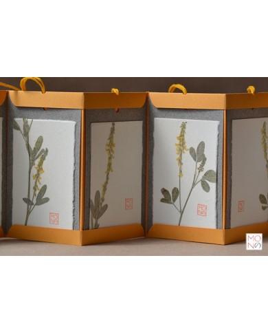 Botanical Book Tag - Meliloto