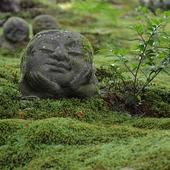 Haiku della domenica...  Sotto la luce del giorno il buon vecchio Jizō  sorride  Taneda Santoka (1882-1940)  Sanzen-in temple, Ohara, Kyoto 📷 Monoarte photo credit   #haiku #poetry #japanesepoem #santoka #三千院 #sanzenin #sanzenintemple #ohara_temple #kyototemple #japanesetemple #kyoto #japan #zen #monoarte