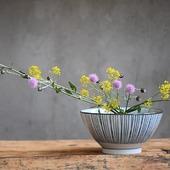 Ramen fiorito...  #ramenbowl #donburibowl #japanceramics #japanesepottery #madeinjapan #rorippa #cirsumarvense #アザミ #野の花 #wildflowers #wildherbs #herbesfolles #wildblumen #もりばな #monoarte