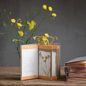 Bacellobook: Radichella capillare, Crepis capillaris  Struttura contenitiva a concertina ideata da@cibidia@professionelibro  #erbario#herbarium#herbier  #erbedicampo#erbespontanee #erbeselvatiche#野の花 #wildherbs #herbesfolles#fiorispontanei #flowers #radichellacapillare #crepiscapillaris #smoothhawksbeard #handemadebooks #handmade#bacellobook #leporello#concertina #concertinabook#accordionbook #fattoamano #fattoamanoconcura #monoarte